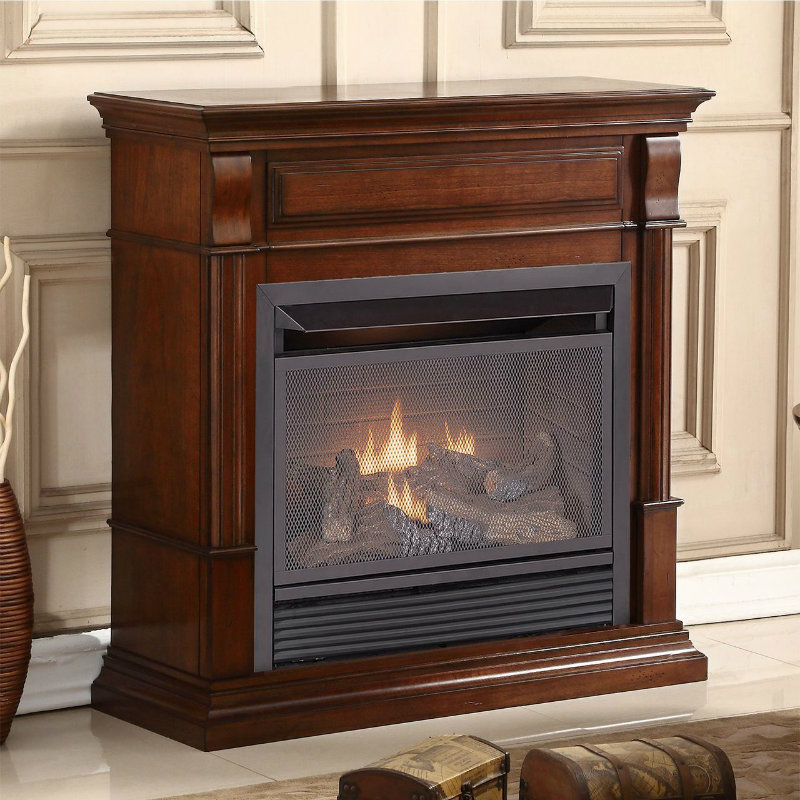 Duluth Forge Dual Fuel Ventless Gas Fireplace